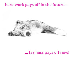 Hard work vs laziness