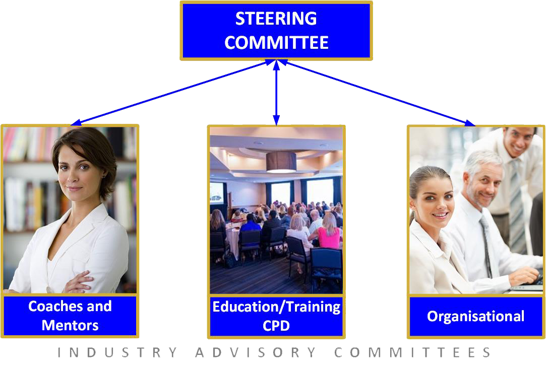 Coaching and Mentoring Industry Direction
